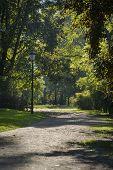 Sunny, Autumn Day In Tye Park Saski In Warsaw,