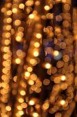 Gold Festive Lights