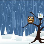 foto of snow owl  - Merry Christmas Card - JPG
