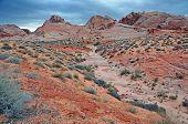 Red Rock Landscape, Southwest USA