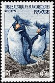 Penguins Stamp