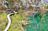 Rich Colors of the Plitvice Lakes National Park, Croatia