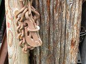 Rusty Latch And Chain
