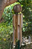 picture of chimes  - Coconut  - JPG