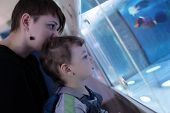 Mother And Son At Oceanarium