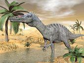 Suchomimus dinosaurs in desert - 3D render