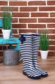 Pair of colorful gumboots, plant in pot, chair and watering can  on color wall background
