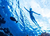 Active woman diving in the sea and enjoying wild nature, swimming underwater and consider different fishes, extreme sport, luxury summer vacation concept