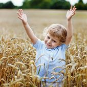 Happy Little Boy Having Fun In Wheat Field In Summer