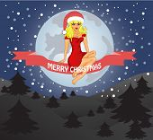 Merry Christmas Greeting Card Landscape With Snow Maiden. Vector
