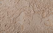 Decorative Plaster With Marked Relief In Antique Style