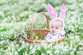 Cute Little Baby Wearing Bunny Ears Sitting In A Basket Between Beautiful Spring Flowers During East