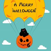 Halloween Greeting With Funny Cat