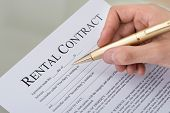picture of rental agreement  - Cropped image of hand filling rental contract form on desk - JPG