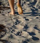 feet leaving footprints in sand