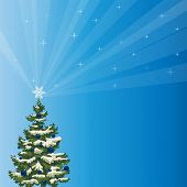 Snowy Holiday Tree with a Shining Star Over Blue