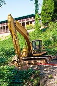 foto of kudzu  - Heavy Construction Equipment on a kudzu covered hill in the woods - JPG