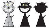 Cheshire cat three shapes