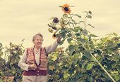 Senior Woman Smiling At A Sunflower