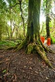 Buddhist Monks In Misty Tropical Rain Forest. Sun Beams Shining Through Trees At Jungle Landscape