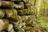 stock photo of smoky mountain  - An old stone wall in a forest covered with moss - JPG