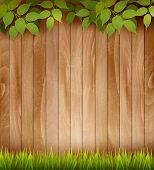 picture of grassland  - Natural wooden background with leaves and grass - JPG