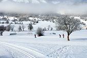 Country-cross Ski