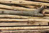 Pile Of Thin Wooden Sticks