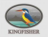 An illustration of beautiful Kingfisher bird