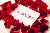 ich liebe dich against card surrounded by rose petals
