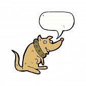 cartoon happy dog in big collar with speech bubble