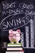 Piggy Bank With Savings Advice