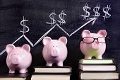 picture of prosperity  - Three pink piggy banks standing on books next to a blackboard with simple savings progress chart. Sharp focus on the piggy banks.