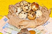 quail eggs on the background of banknotes