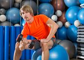 dumbbell concentrated biceps curl  man workout at gym sit on swiss ball fitball