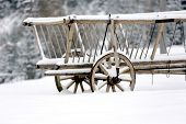 wooden carriage in winter forest