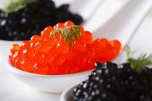 Delicacy Red And Black Caviar Fish Macro Horizontal