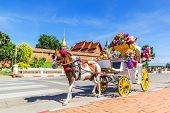 picture of carriage horse  - Horse carriage Parking in front of Wat Phrathat Lampang Luang temple for services to tourists in Lampang Thailand - JPG