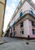 pic of dog-house  - a brown dog sleeping on an empty street in havana taken from a low perspective with a pink house in the background - JPG
