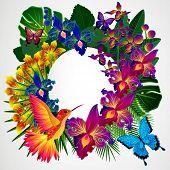 foto of tropical birds  - Floral design background - JPG