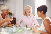 pic of maturity  - Group Of Mature Female Friends Enjoying Meal At Home - JPG