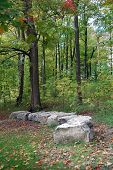 Rock Trail Fall