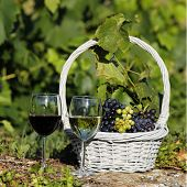 wine square