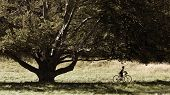 Country Biking
