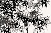 Bamboo: Vector