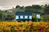 Pôr do sol em uma casa em um vinhedo de Sonoma