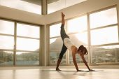Fit Woman Practicing Downward Facing Dog Pose With One Leg Stretching Upward In Fitness Studio. Fitn poster