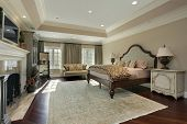 pic of master bedroom  - Master bedroom in luxury home with marble fireplace - JPG