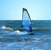 Lone Windsurfer