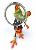 foto of glass frog  - Business frog - JPG